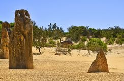 Австралия, WA, эму и башенкы в национальном парке Nambung Стоковые Изображения