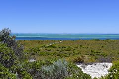 Австралия, WA, Cervantes, берег Стоковое фото RF