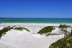 Австралия, WA, Cervantes, пляж Стоковые Фото