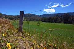 Австралийская сельская местность Стоковое Изображение