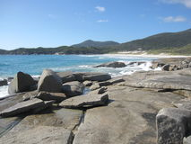 Австралийские скалистые побережье и пляж с гигантскими утесами и родными заводами Стоковое Изображение RF