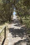 Австралийский путь пляжа стоковая фотография