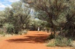 Австралия, неизвестный человек идя в путь в центре Австралии, один человек в предпосылке куста, популярное место Uluru в Австралии Стоковая Фотография RF