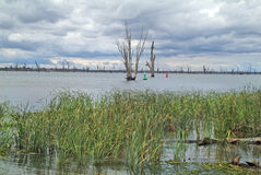 Австралия, VIC, озеро Mulwala Стоковые Изображения RF
