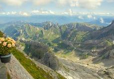 Австриец Альп и цветочный горшок стоковая фотография