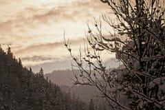 Австриец Альпы, ландшафт зимы на заходе солнца Стоковая Фотография