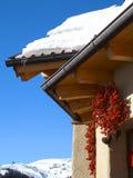 австрийская зима Стоковые Изображения