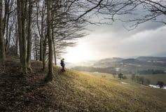 Австрийские холмы Стоковые Фотографии RF