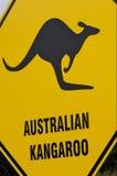 австрийский кенгуру Стоковая Фотография RF