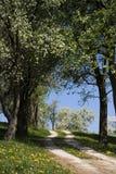 австрийский ландшафт Стоковые Изображения RF