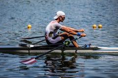 Австрийский спортсмен на rowing конкуренции чашки мира гребя Стоковая Фотография RF