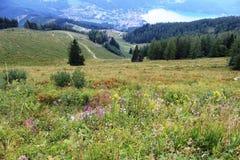 Австрия, Альпы: Вид на озеро Wolfgangsee и городок St Gilgen стоковые фотографии rf