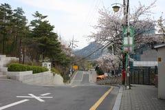 Автобусная остановка в Сеуле, Южной Корее Стоковое Изображение RF