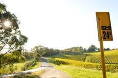 Автобусная остановка страны в винодельческом регионе холмов Аделаиды Стоковые Изображения RF