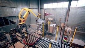 Автоматизированная робототехническая загрузка руки, продукты упаковки Современное промышленное оборудование видеоматериал