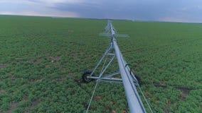 Автоматическая система водообеспечения, вид с воздуха на сельском поле земледелия с рапсом и современное оборудование полива акции видеоматериалы