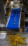 Автоматическая сосиска делая машину Стоковые Изображения RF