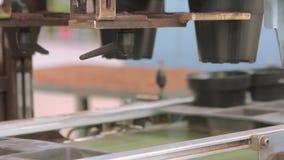 Автоматическая упаковка на предприятии, автоматизированная линия на фабрике расти цветка сток-видео