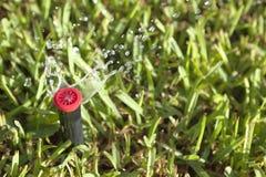 Автоматические спринклеры травы и сада лужайки стоковое изображение rf