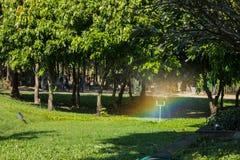 Автоматический спринклер лужайки сада Стоковая Фотография RF