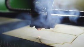 Автомат для резки лазера на работе Вырезывание переклейки : видеоматериал