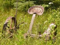 Автомат для резки сена Стоковые Фотографии RF