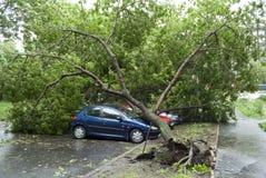 автомобили повредили Стоковая Фотография
