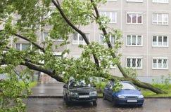 автомобили повредили Стоковое Изображение