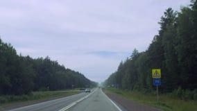 Автомобили управляют вдоль дороги рядом с лесом акции видеоматериалы