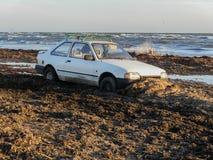 Автомобиль вставленный на seashore стоковые изображения rf