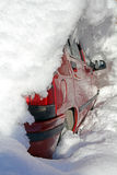Автомобиль в зиме Стоковое Изображение