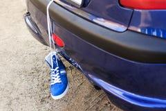 Автомобиль голуб в хоботе тапки смертной казни через повешение для бежать больше спорт zanimatsya стоковые фотографии rf