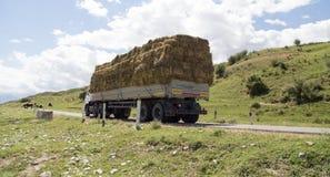Автомобиль гружёный с сеном в природе стоковая фотография rf