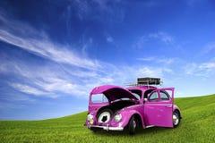 автомобиль жука Стоковая Фотография