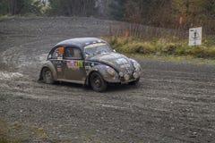 Автомобиль ралли жука VW Стоковые Изображения RF