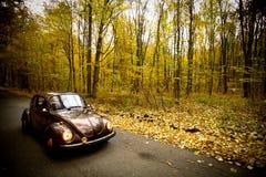 Автомобиль сбора винограда осени Стоковая Фотография