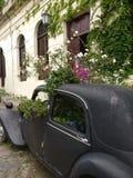 Автомобиль с цветками Стоковое Изображение