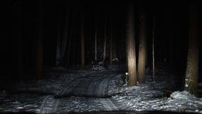 Автомобиль управляет медленно вдоль узкой дороги леса в зиме сток-видео