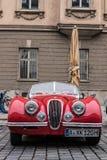 Автомобиль oldtimer ягуара Стоковое фото RF