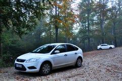 Автомобили на дороге леса Стоковое Изображение