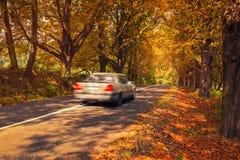 Автомобильное путешествие Стоковое Изображение RF