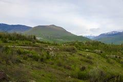 Автомобиль в горах Стоковые Изображения RF