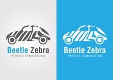 Автомобиль жука с текстурой зебры комбинация совершенная Стоковое Фото