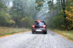 Автомобиль на дороге в лесе стоковые изображения