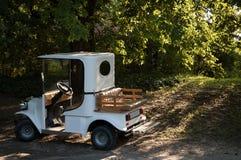Автомобиль припаркованный в парке Стоковые Фотографии RF