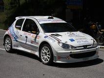 Автомобиль ралли 1600 Peugeot 206 супер Стоковая Фотография