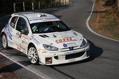 Автомобиль ралли 1600 Peugeot 206 супер Стоковые Изображения RF