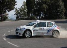 Автомобиль ралли 1600 Peugeot 206 супер Стоковые Фото