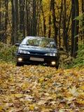 Автомобиль с включенными фарами в вечере в лесе осени перед спуском Стоковое Фото