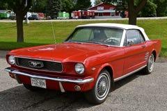 автомобиль с откидным верхом мустанга 1966 красных цветов Стоковое фото RF